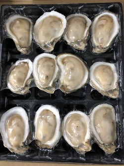 IQF Half Shell Oysters Vacuum Skin Tray Packaging